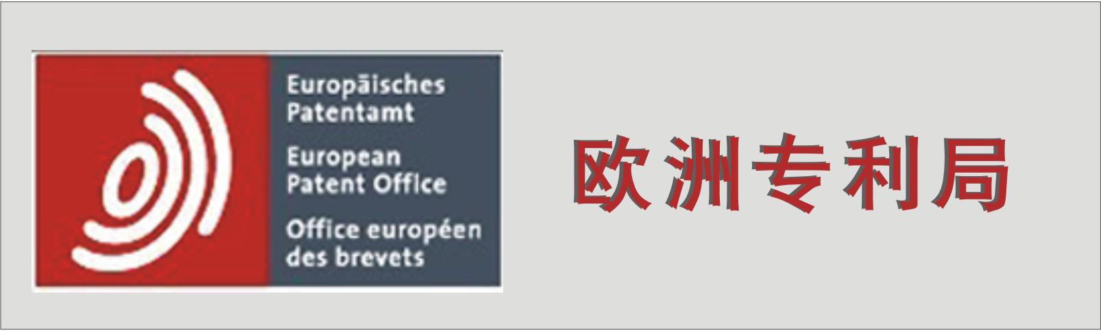 欧共体外观设计申请