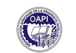 非洲知识产权组织及非洲国家注册商标